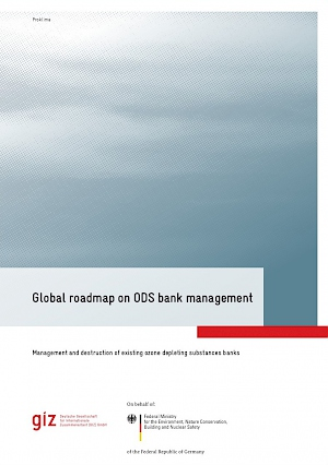 Cover Global roadmap on ODS bank management, 2017