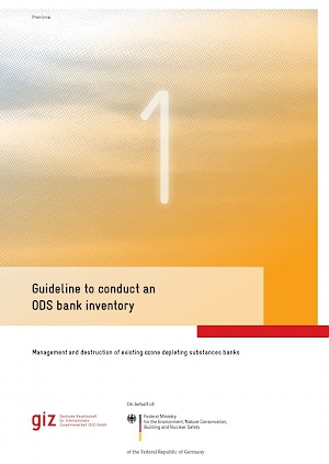 Cover Guideline to conduct an ODS bank inventory, 2017
