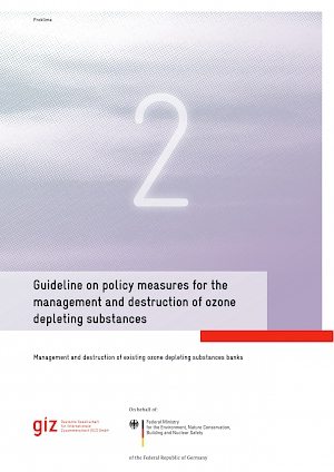 Cover Guideline on policy measures for the management and destruction of ozone depleting substances, 2017